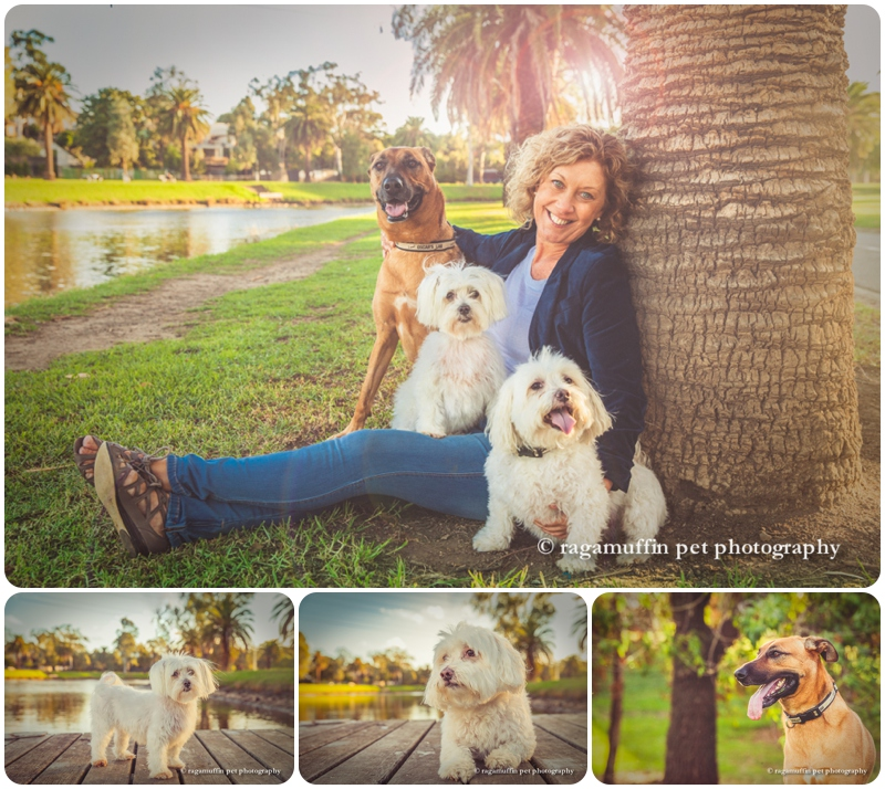 Maribyrnong pet photographer