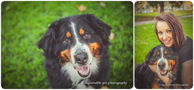 Brooke and her Bernese Mountain Dog Greta