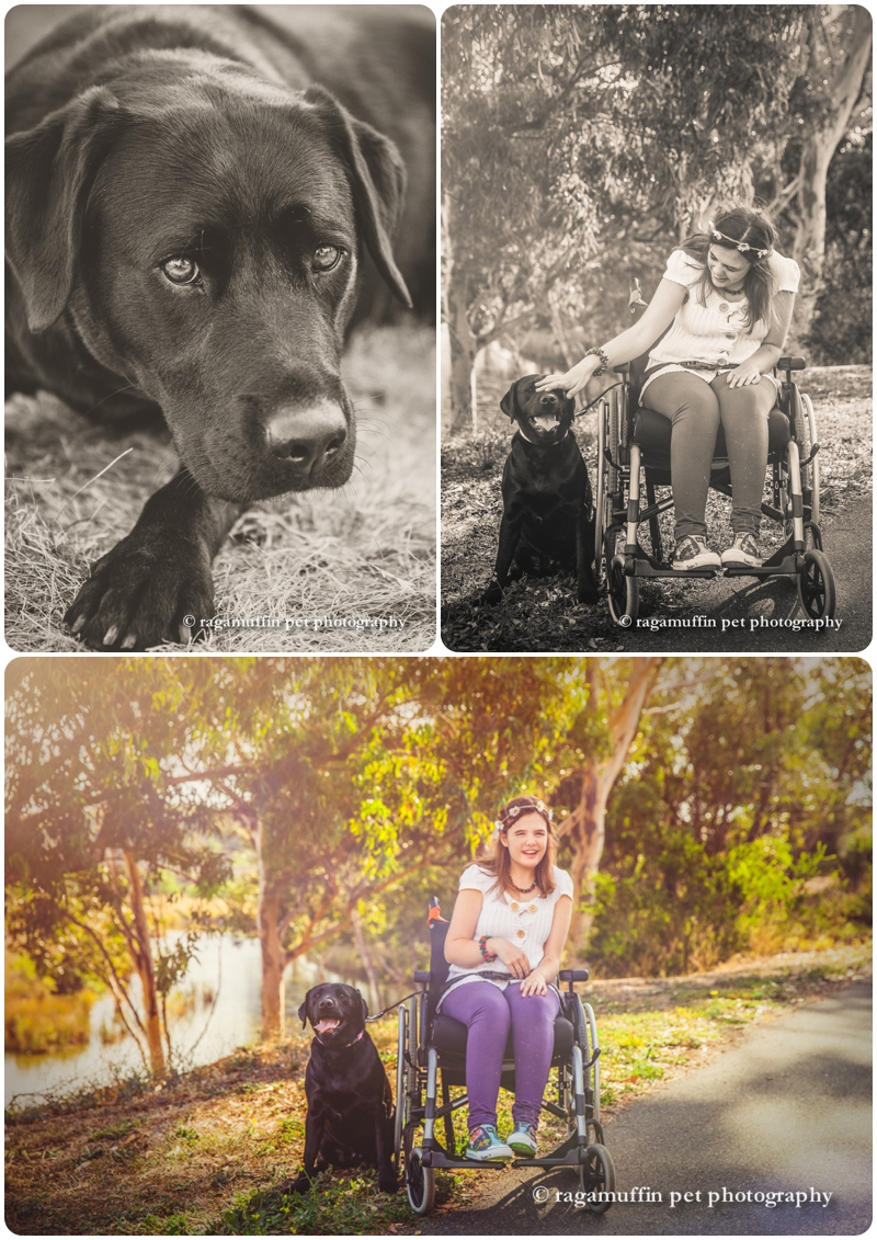 Girl in wheelchair with dog
