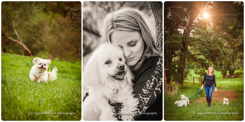Artistic Photographs of Lady with her Dogs in Templestowe