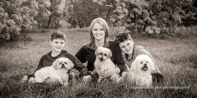 Natural Family Photograph with their Dogs in Templestowe