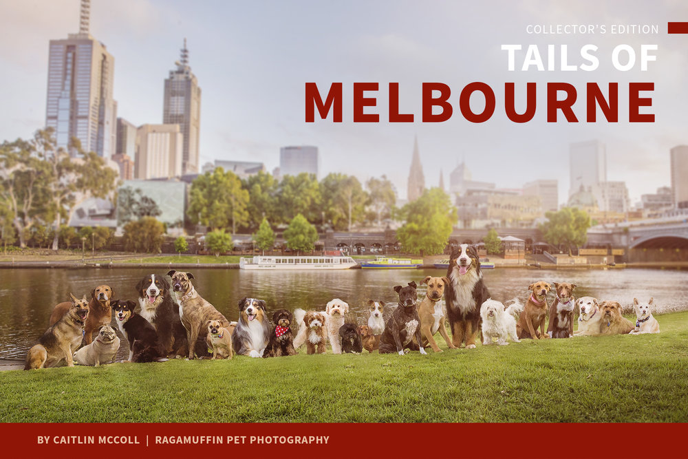 tails-of-melbourne-cover-web.jpg