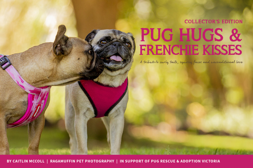 Pug Hugs & Frenchie Kisses: The Book - From award-winning artist Caitlin McColl (founder of the Tails of the World Collective, and author of Tails of Adoption, Tails of Melbourne and Tails of Tasmania) comes the newest edition in a series of beautiful books celebrating our four-legged friends. PUG HUGS & FRENCHIE KISSES is a fundraising photobook that tells the uplifting, love-filled stories of Melbourne's beloved wrinkles.