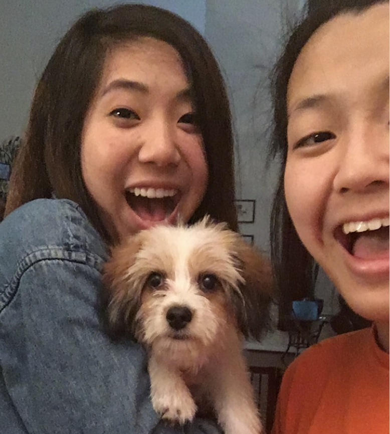 Grace Geng - I'm thankful for my family's two month old puppy, Milo!