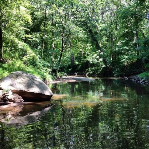 Proctor Creek2.jpg