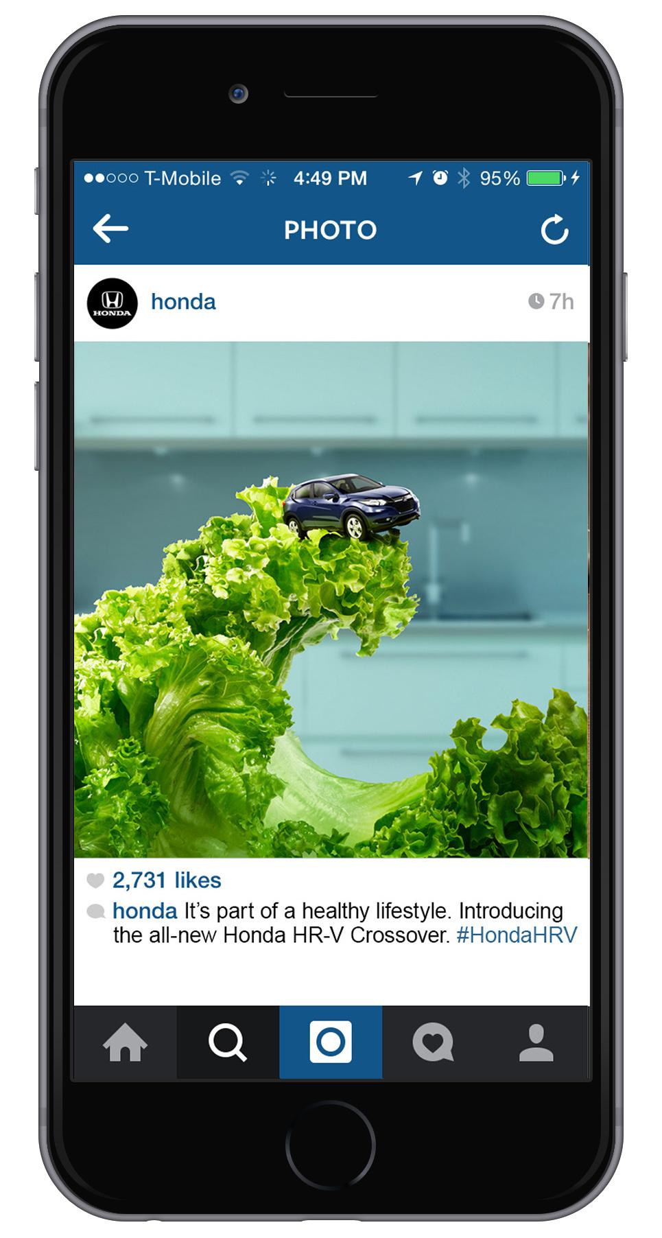 1_IG_lettuce.jpg