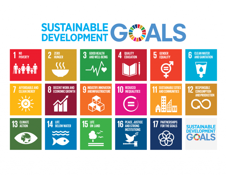 U.N. development goals
