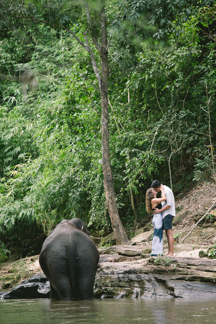 love+and+elephants+at+Chai+lai.jpeg