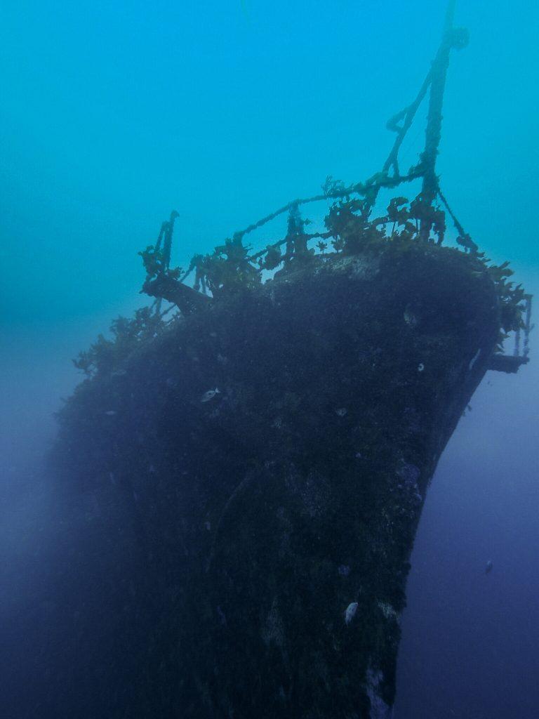 shipwreck-768x1024.jpeg