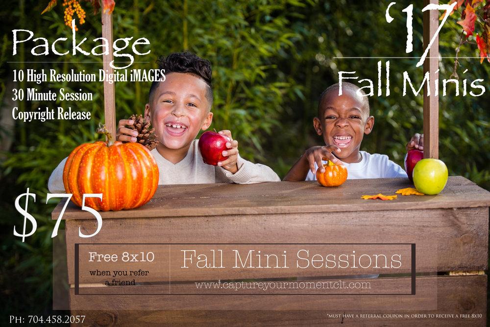 Fall Mini 2017 (4).jpg