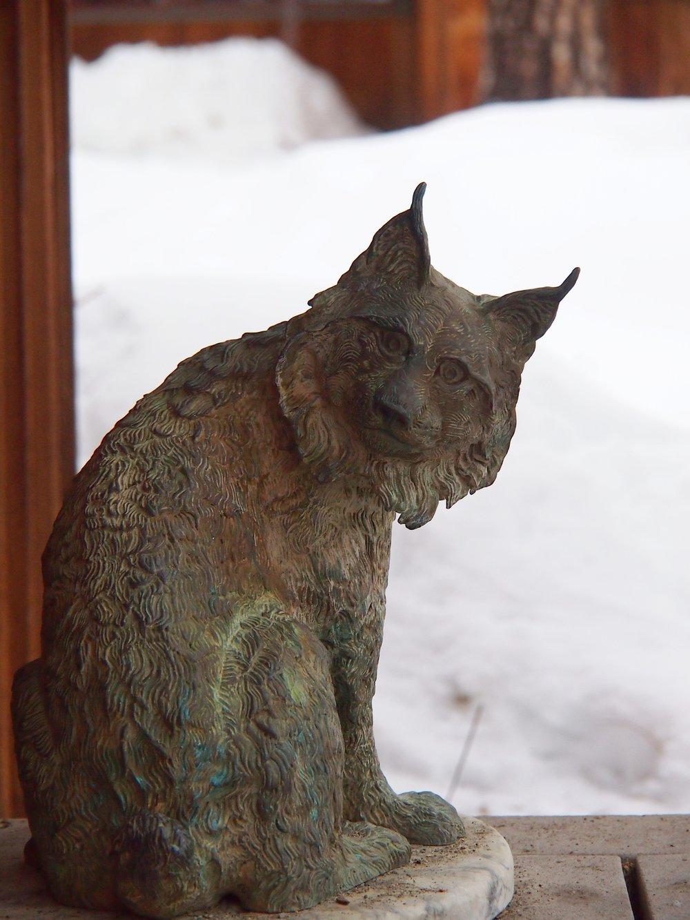 Lynx Awaits