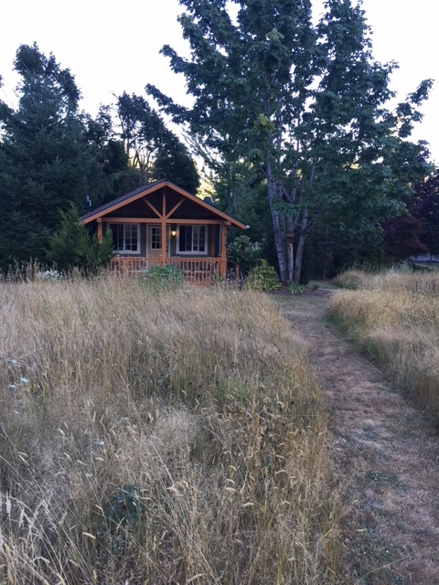 Cabins Are Situated Around A Meadow