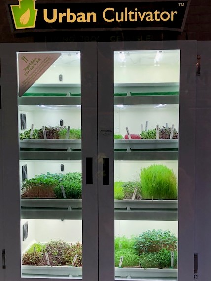 Fresh, Hydroponic-Grown Ingredients