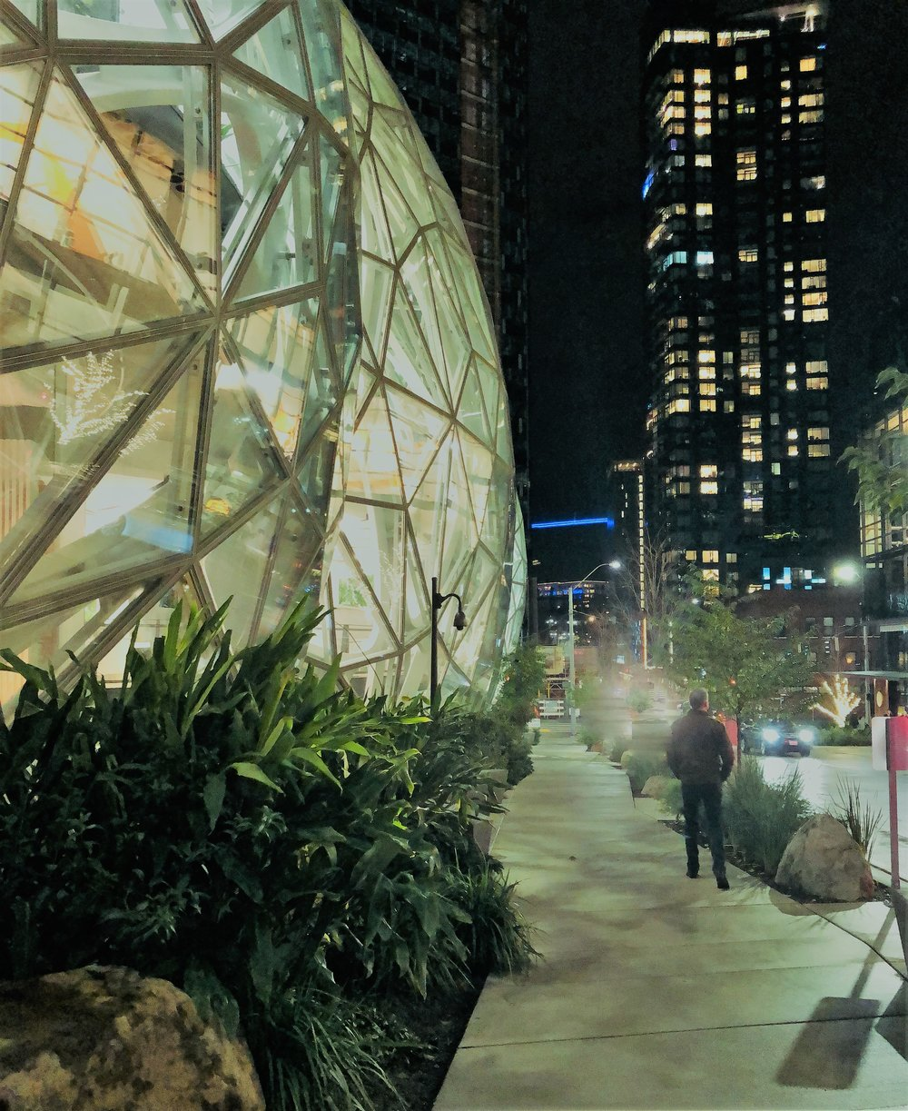 Amazon Biosphere Tour