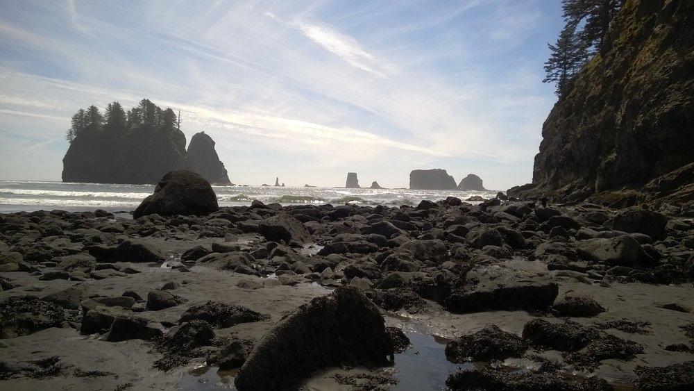 First Beach, La Push, WA