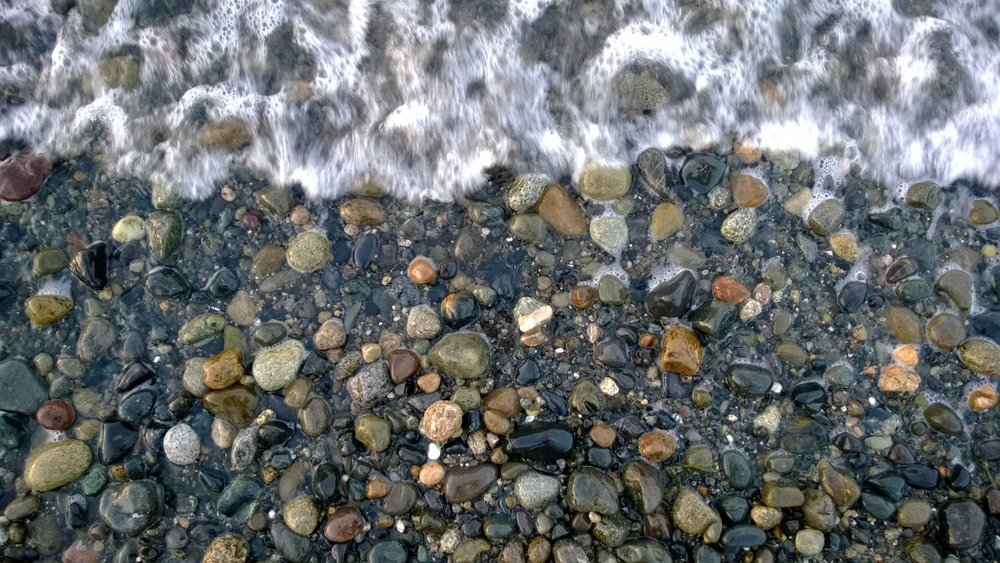 Camano Island Beach, WA