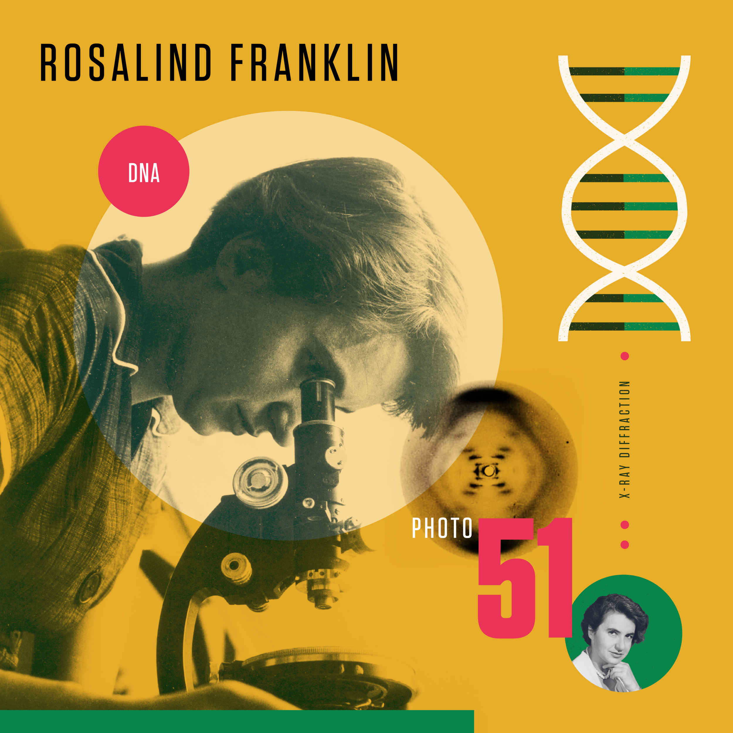 rosalind franklin beyond curie a design project celebrating women