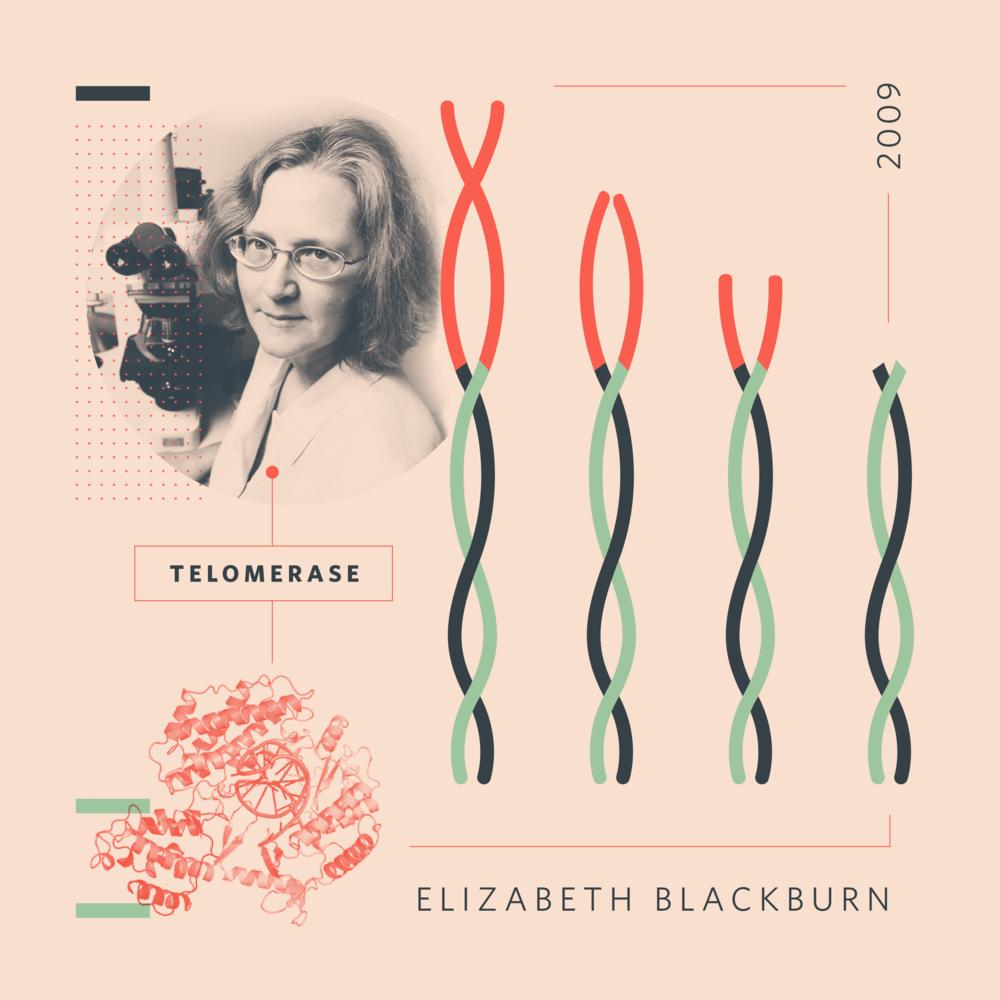 elizabeth_blackburn.png