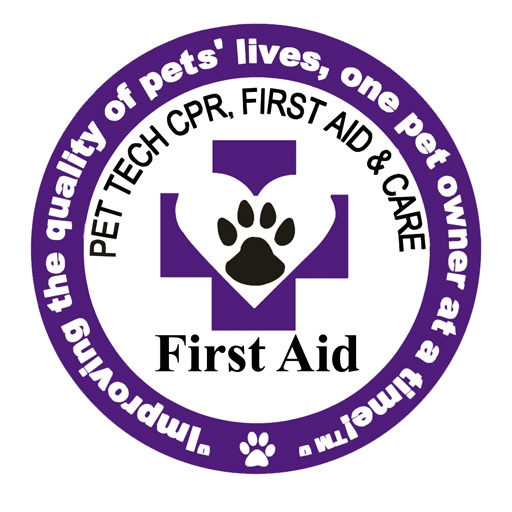 Patch First Aid for pet techlarge.jpg