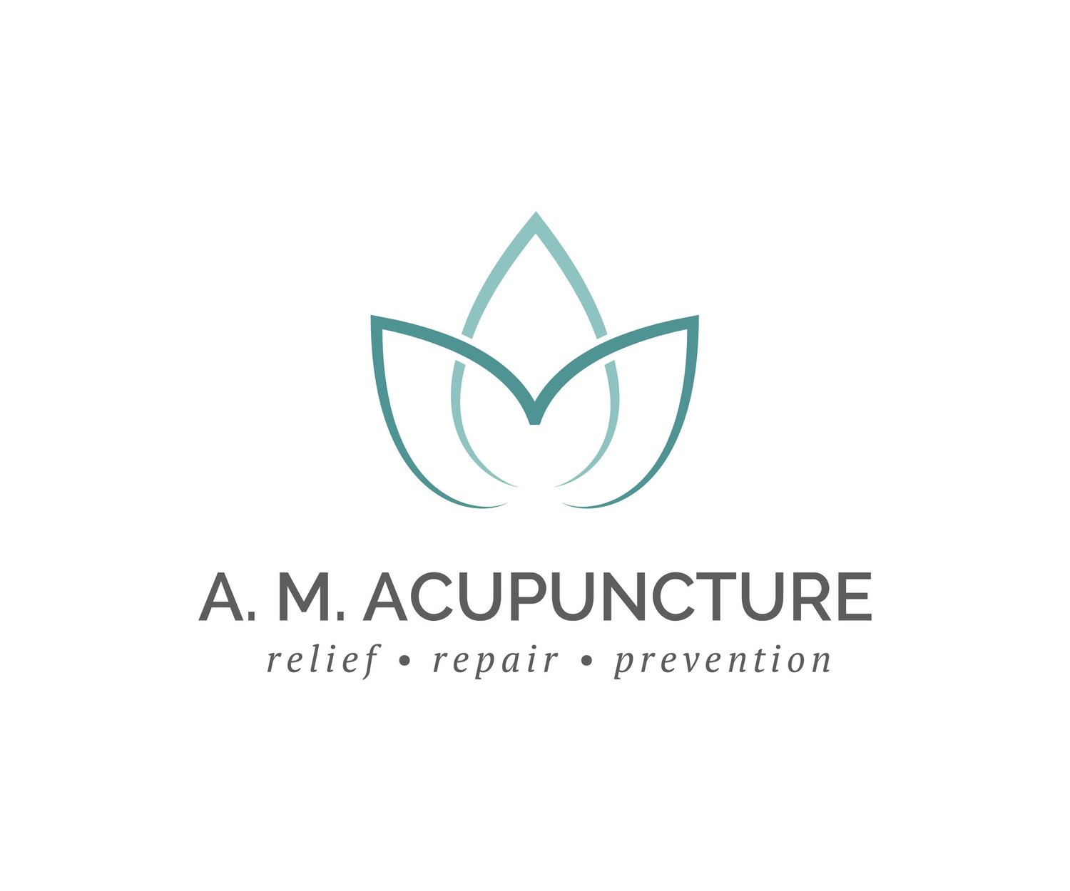 A. M. ACUPUNCTURE, LLC