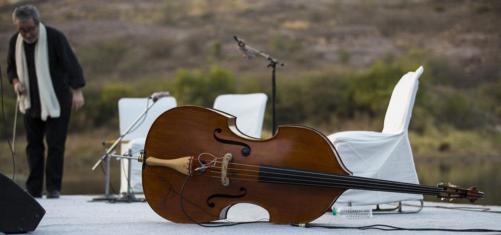 Cello-sm.jpg