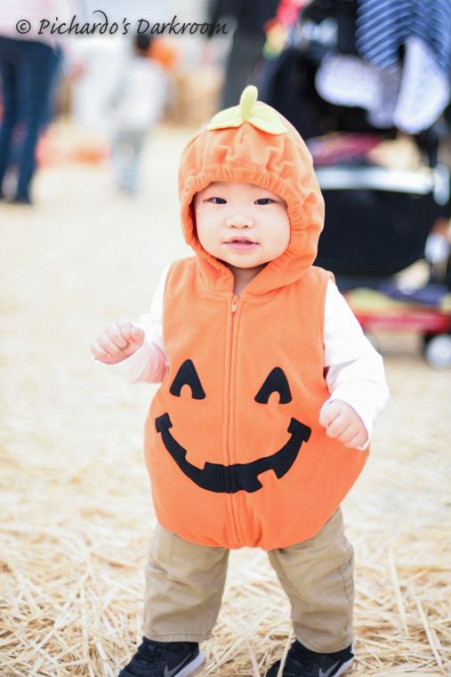 2015_Pumpkin_patch-0876.jpg