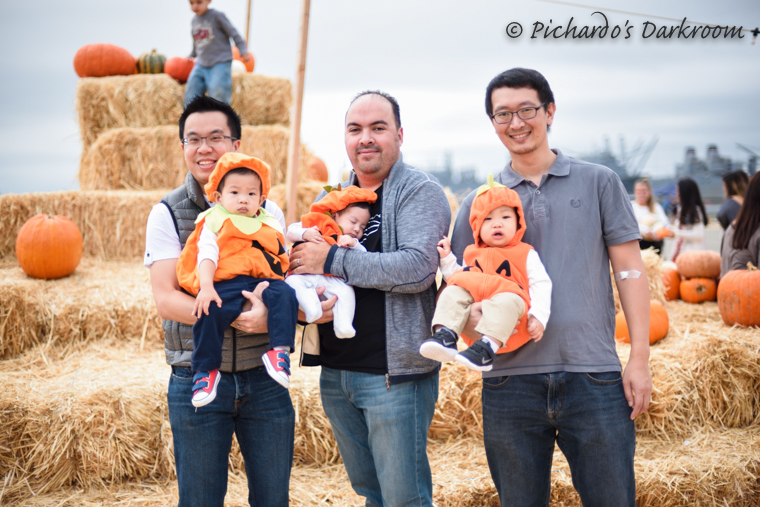 2015_pumpkin_patch-1014.jpg