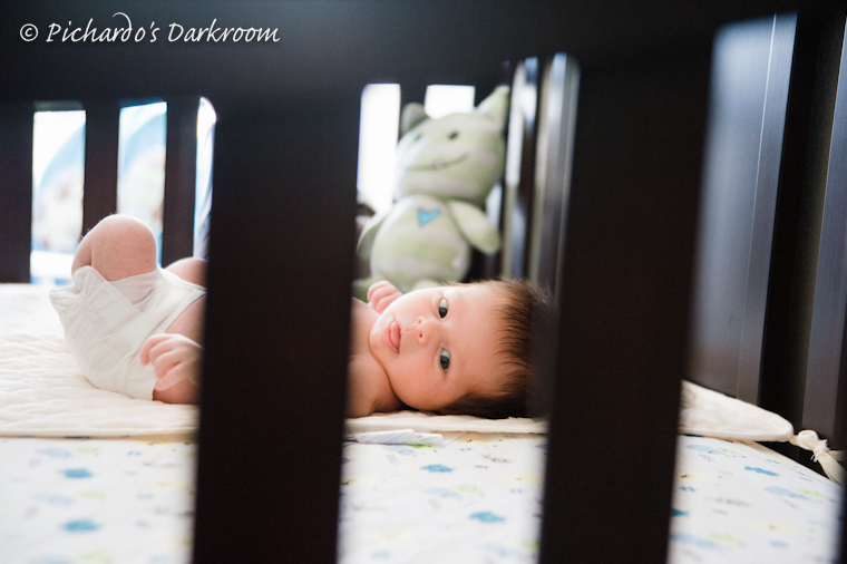 San Francisco bay area newborn photos