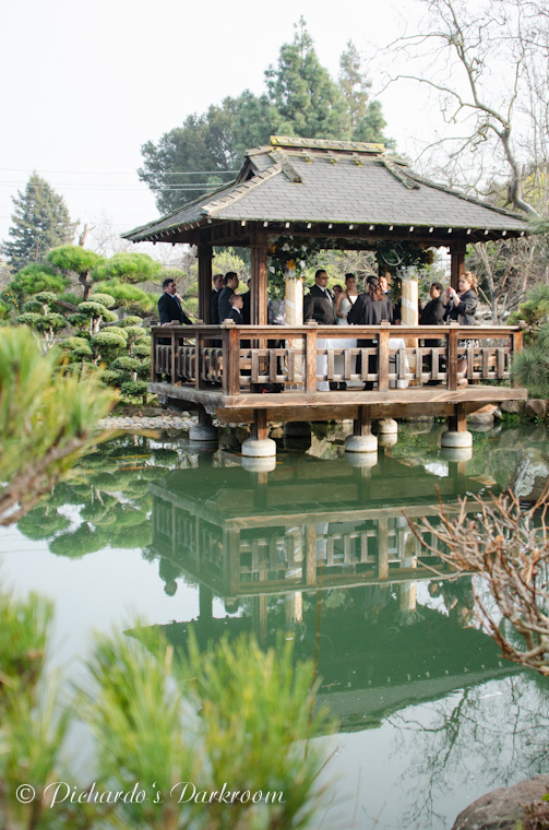 CR Wedding_Hayward_Japanese Garden-1723