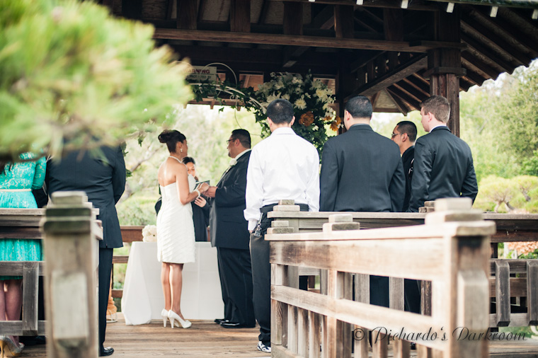 CR Wedding_Hayward_Japanese Garden-1756