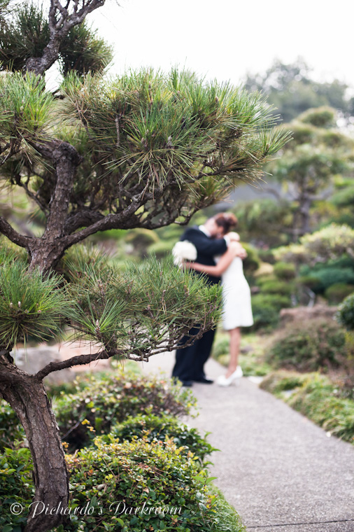 CR Wedding_Hayward_Japanese Garden-1797