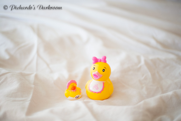 N&J_maternity_photos-2182
