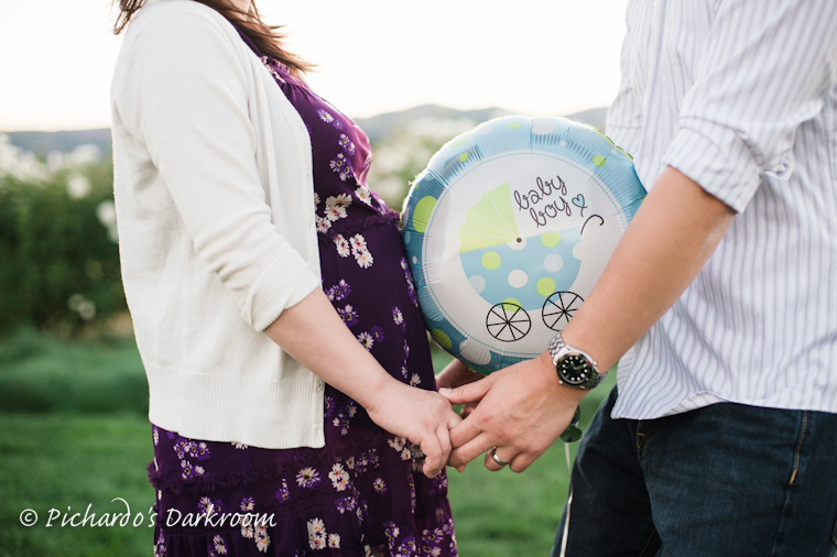 Bay Area Maternity Photography