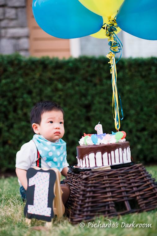 Danville_baby_1st birthday_portrait