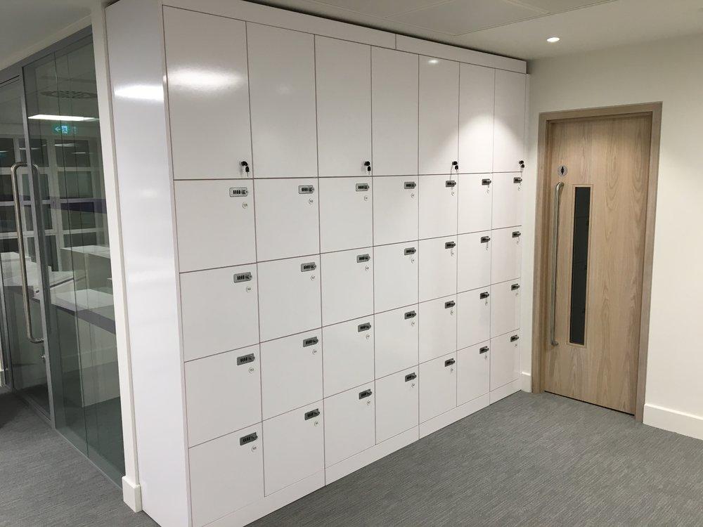 Storagewall Lockers
