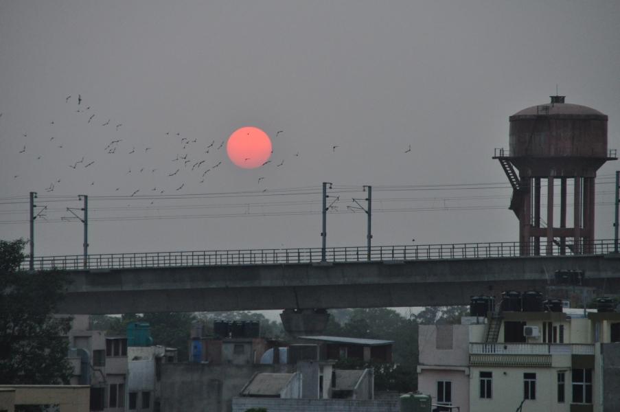 Jaipur11.09.14030.jpg