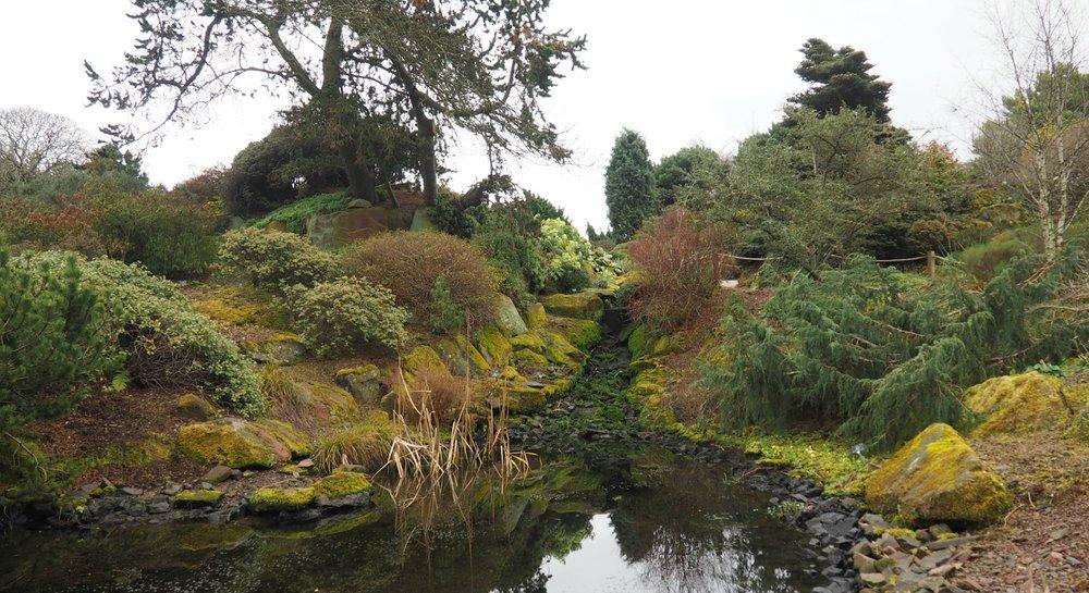 rock garden.jpg