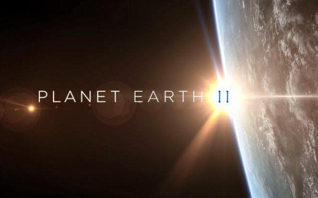 Photo from  Facebook - Planet Earth 2