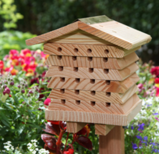 SOLITARY BEE HOUSE JPG.png