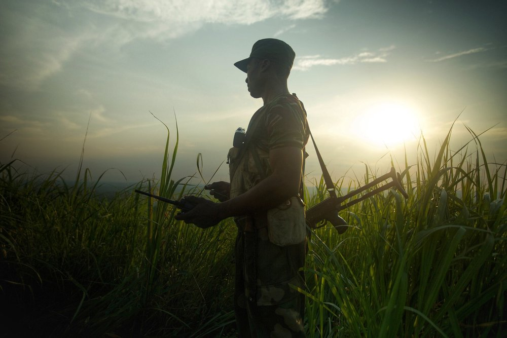 A ranger looks out over Garamba National Park at daybreak. In 1977 there were 22,000 elephants there. Today there are about 1,200. Garamba is the second oldest national park in Africa and one of the deadliest for both elephants and rangers. The Lord's Resistance Army and Sudanese rebels are both active in the park. Photograph: The Last Animals.