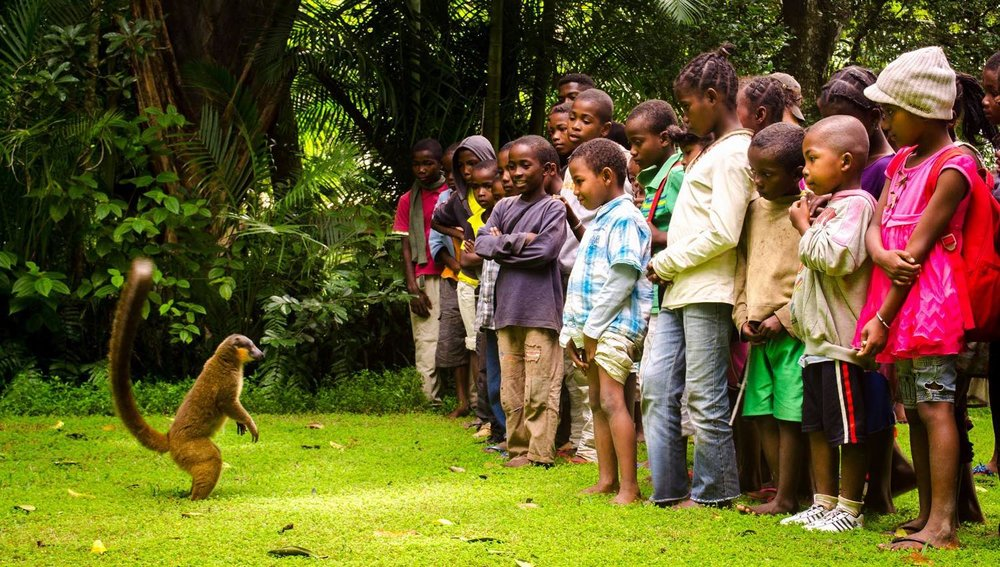 SEED Madagascar conservation club kids meet a lemur in the Sainte Luce Nahampoana wildlife reserve. Picture: Earthchangers.