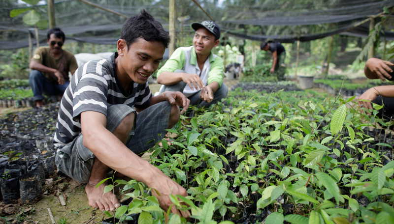 Orang-utan SOS partner NGO Yayasan Orangutan Sumatera Lestari (YOSL) has an excellent track record working closely with local communities.