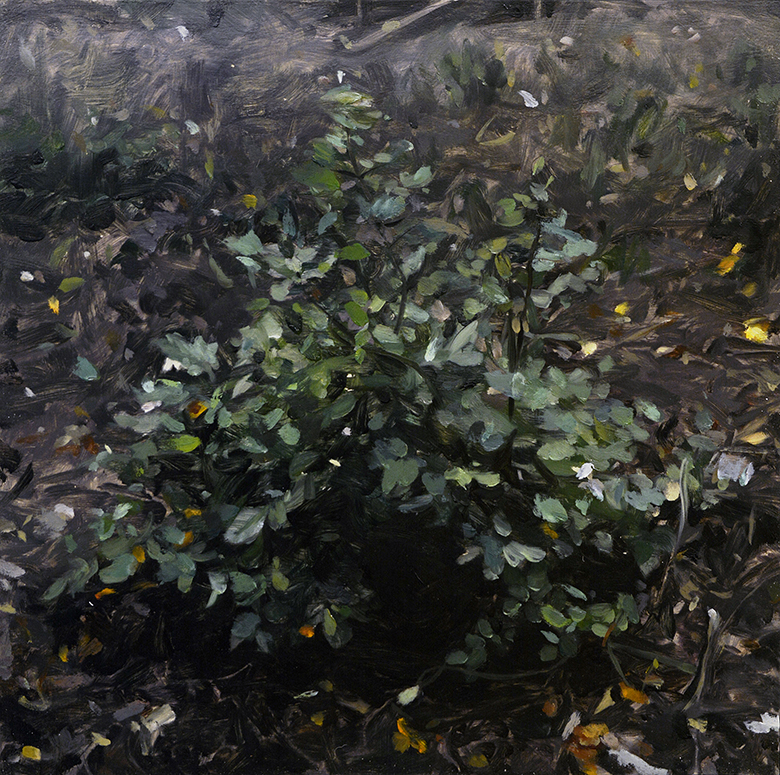 Bush (diptych) / oil on the panel / 45 x 45 cm / 2018