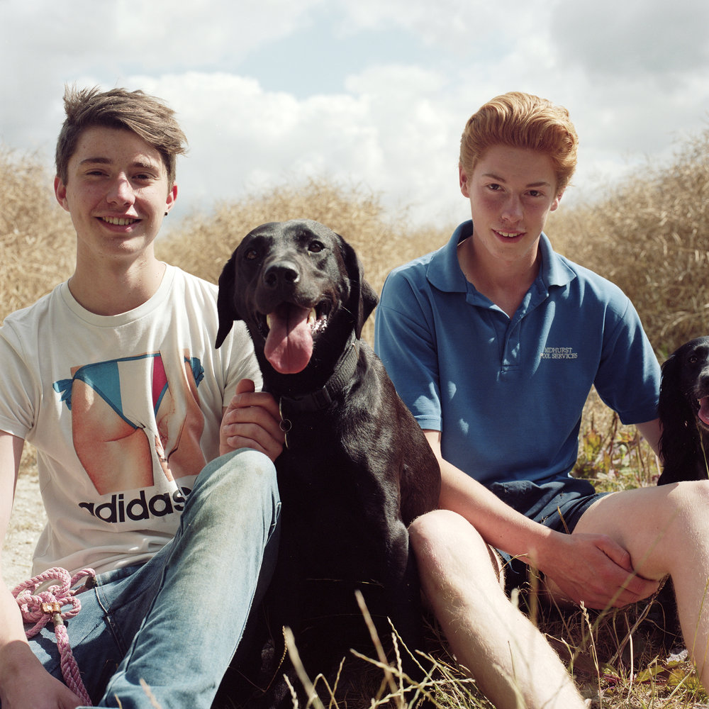 Two boys with their dogs on South Downs Way
