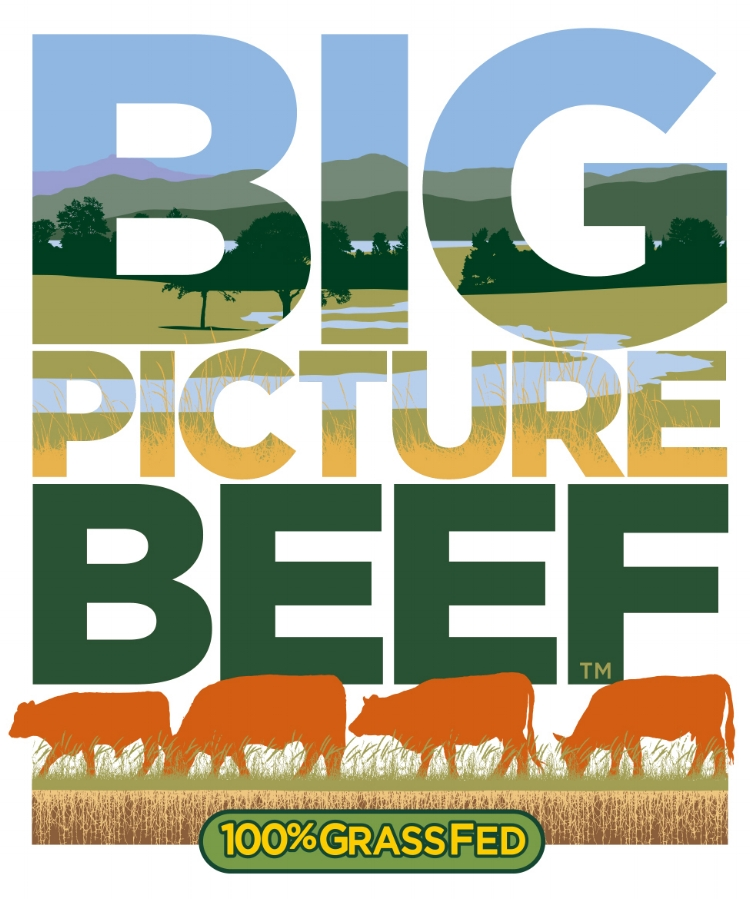 The full logo for Big PIcture Beef