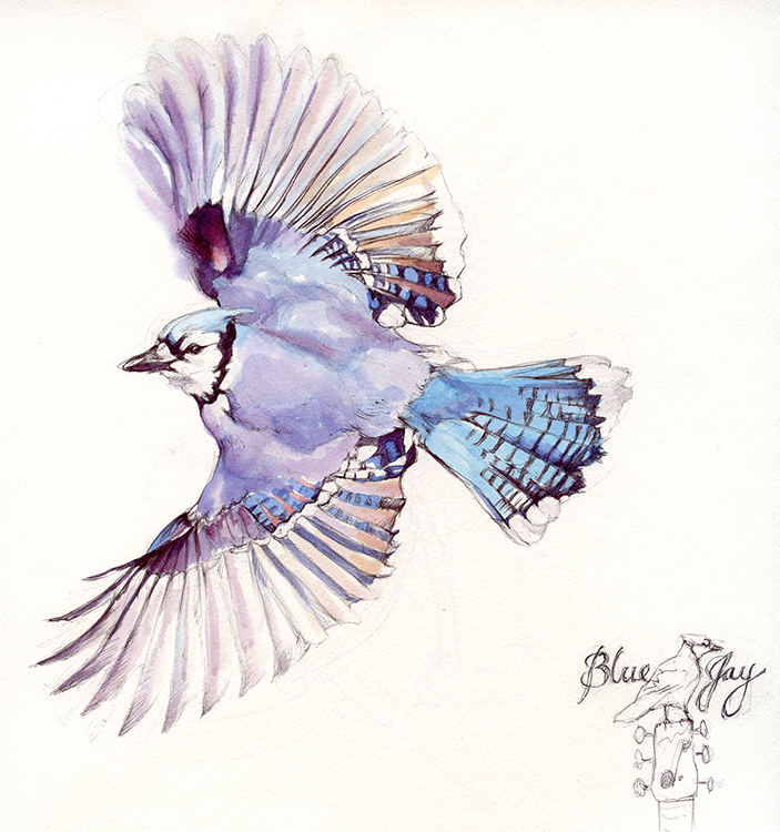 Illustration for Blue Jay Recording Studio
