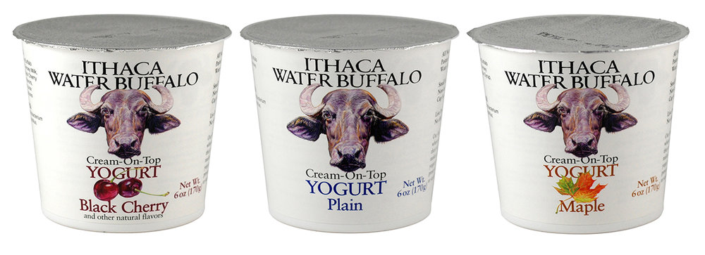 Ithaca Water Buffalo yogurt cups