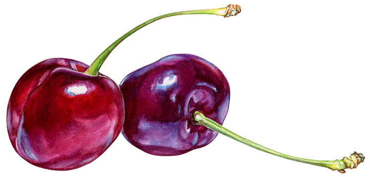 Cherries for yogurt packaging