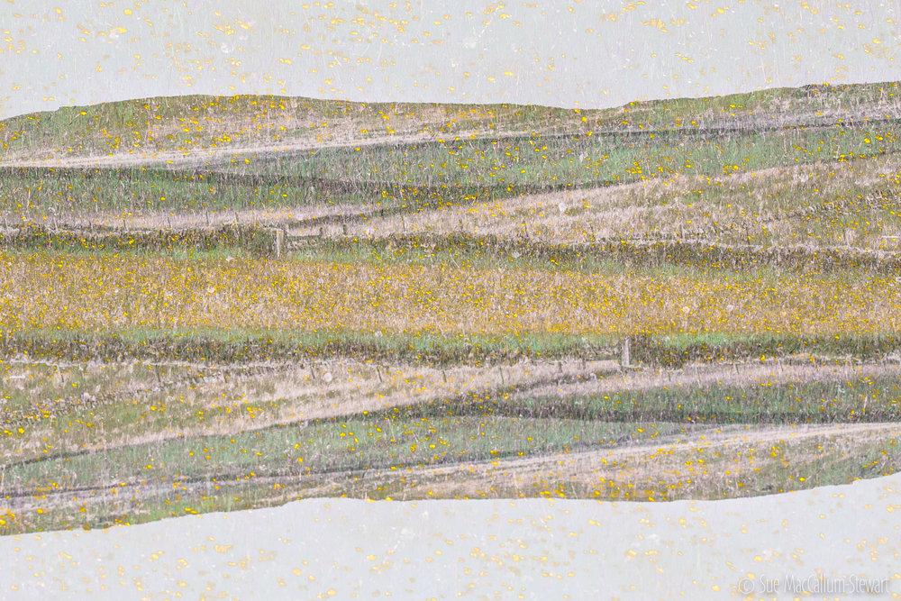 P5250018-2.jpg