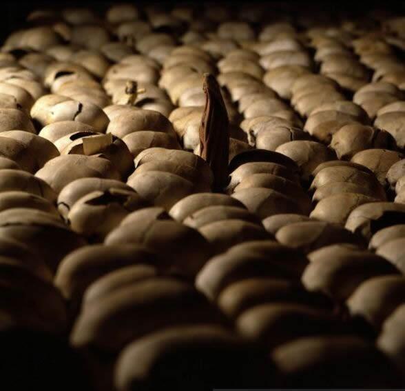 rwanda_genocide_skulls.jpg